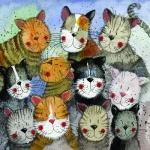 Přání Cats choir