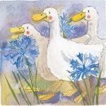 Obrázek Three ducks