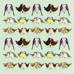 Přání Brilliant birds