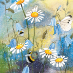 Přání Bee and daisies