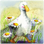 Magnetka Duck in the daisies