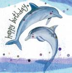 Přání Dolphins