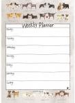 Kalendář plánovací celoroční - Delightful dogs