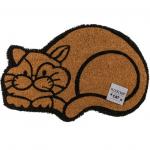 Rohožka Cat, 40*60 cm